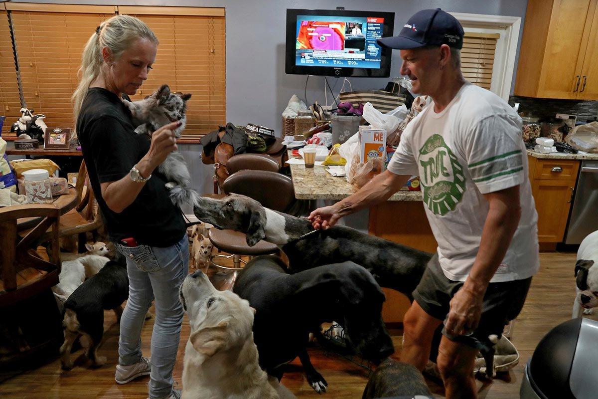 Esta pareja resguardó a 46 animales en su casa durante el huracán Irma enFlorida