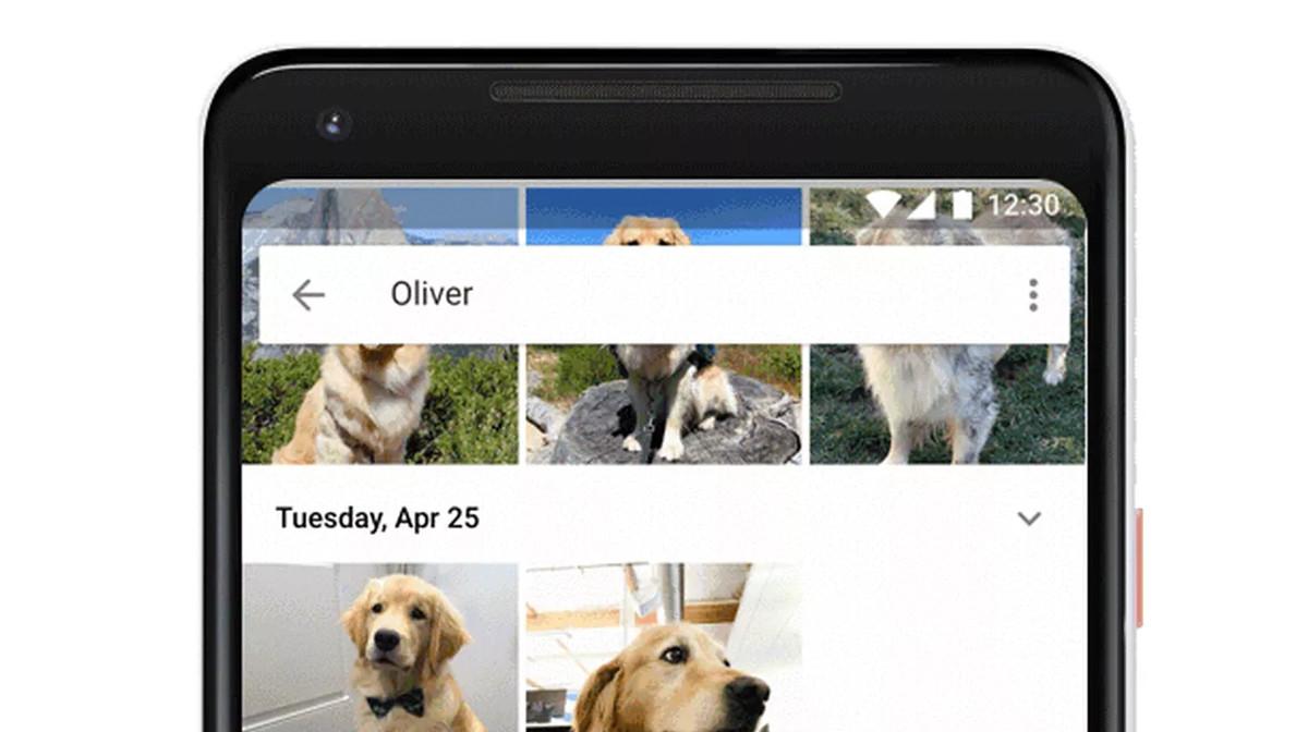 Ya puedes identificar a tus mascotas en GoogleFotos