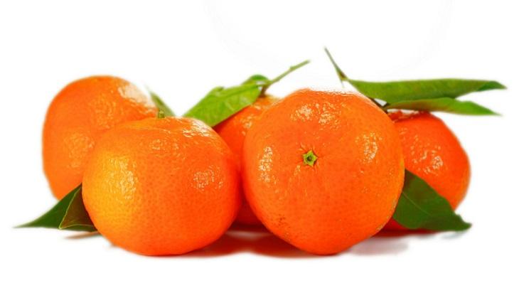 10 Alimentos Muy Recomendables Para ElInvierno